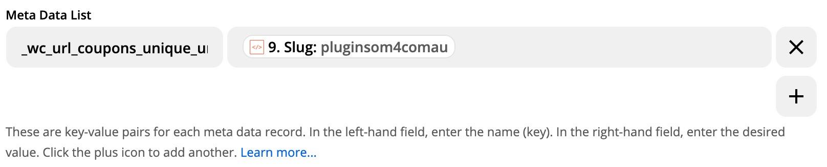 Set Coupon Unique URL Meta Data